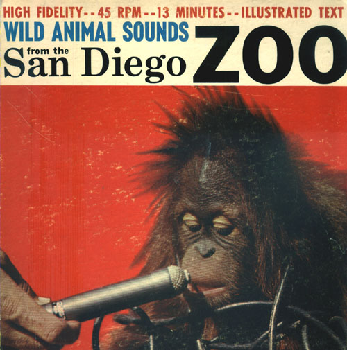 Animals Sounds(San Diego Zoo)